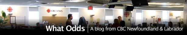 What Odds blog header
