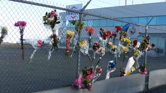 Nl-cougar-fence-20090315
