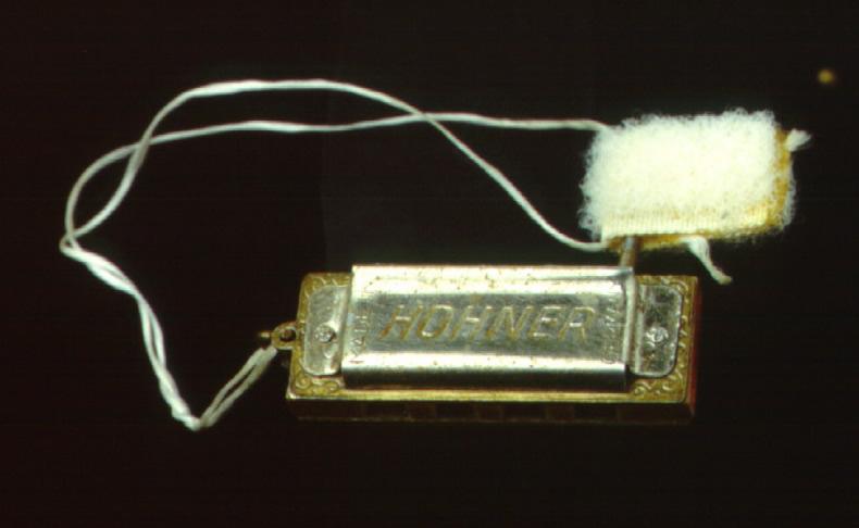 Schirra harmonica Smithsonian