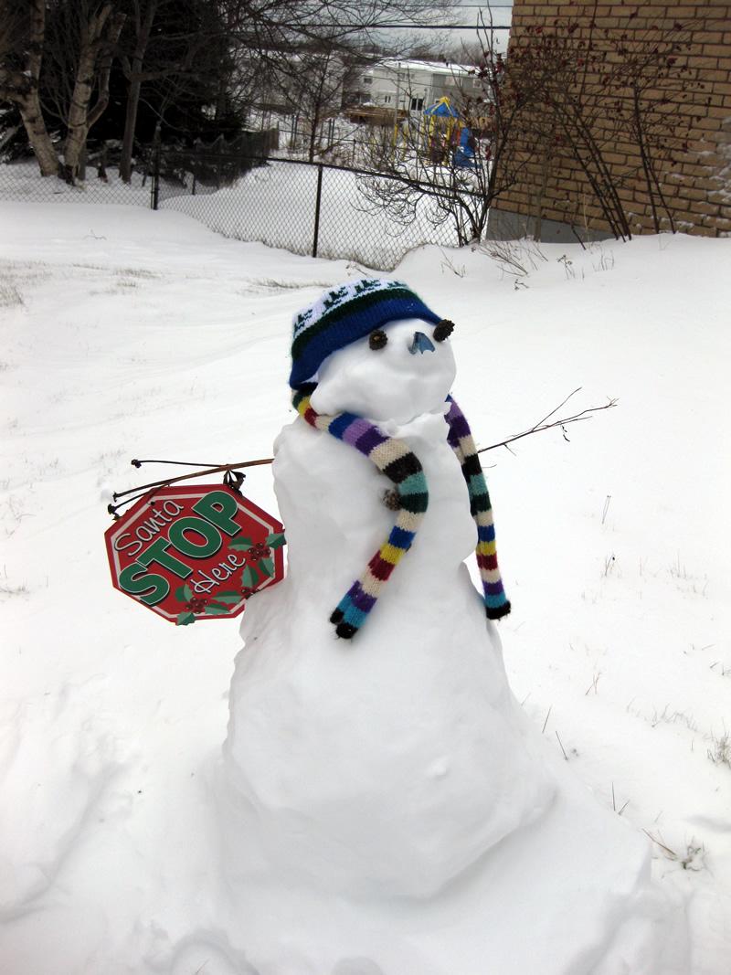 Snowman December 2009