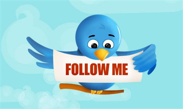 Twitter bird Follow Me