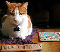 Send tuna Scrabble