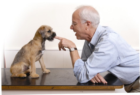 Bruce Vogle with terrier