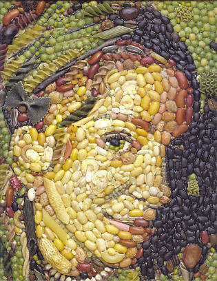 Ani DiFranco made of food from sfcall