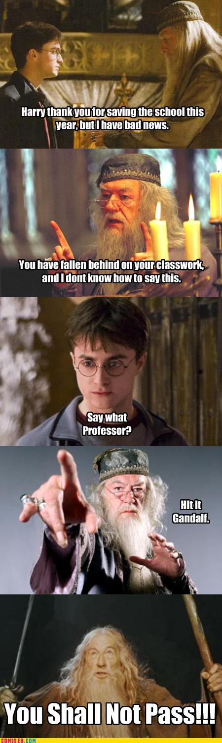 Harry Potter gets his report card