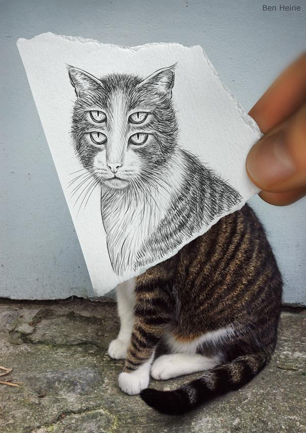 Cat amazingly creative drawing vs photography
