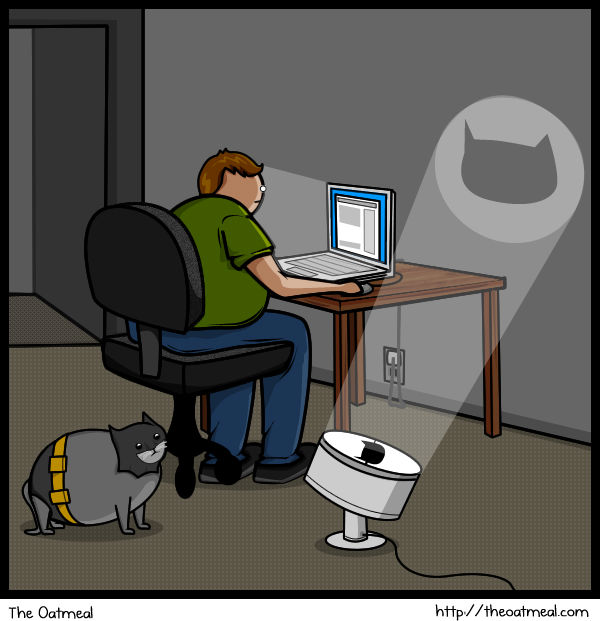 Cat versus internet batman