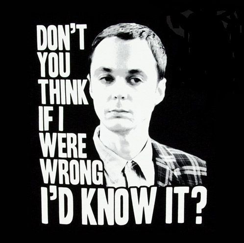 Sheldon Cooper Do You Think If I Were Wrong I'd Know It Big Bang Theory