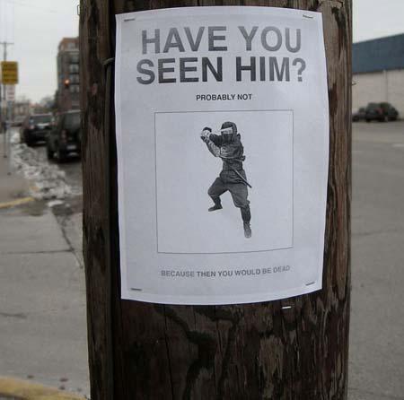 Have you seen him missing ninja