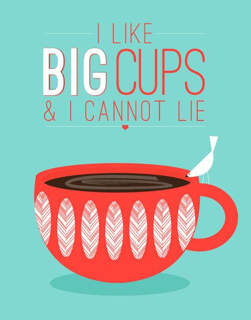 I Like Big Cups and I Cannot Lie