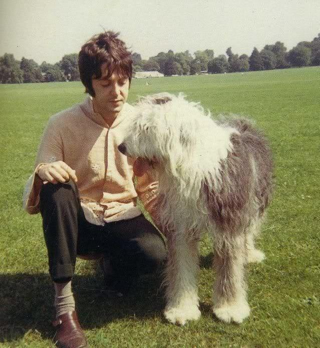 Paul McCartney Martha sheepdog Martha My Dear White Album