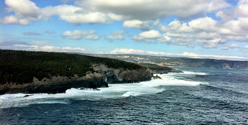 Middle Cove waves March 24 2013