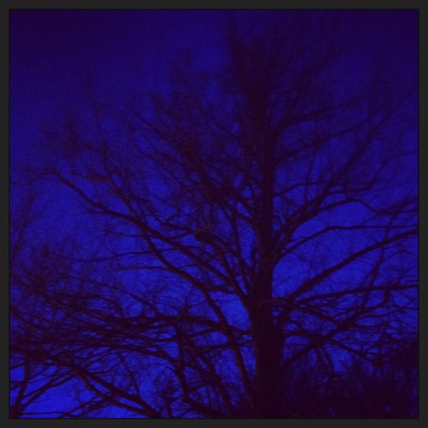 Twilight by Bannerman Park