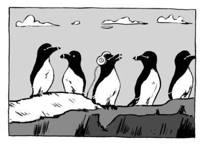 Rattling_books_razorbill_cartoon_ca