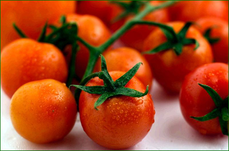 Red_homegrown_tomatoes